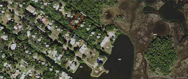 14238 W Sutton Court, Crystal River, FL 34429 (MLS #794030) :: Plantation Realty Inc.