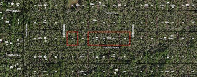 10855 W Wyandotte Street, Homosassa, FL 34448 (MLS #794149) :: Plantation Realty Inc.