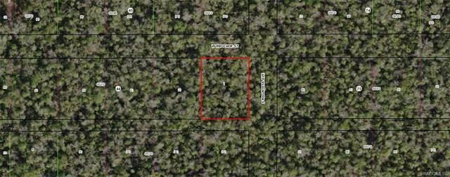 10770 W Brocade Street, Homosassa, FL 34448 (MLS #794161) :: Plantation Realty Inc.