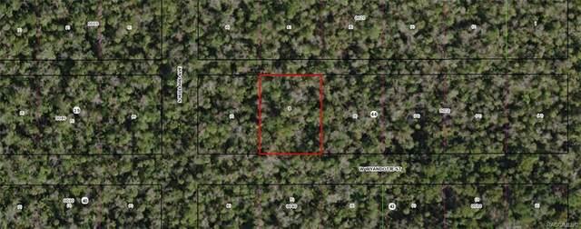 10855 W Wyandotte Street, Homosassa, FL 34448 (MLS #794162) :: Plantation Realty Inc.