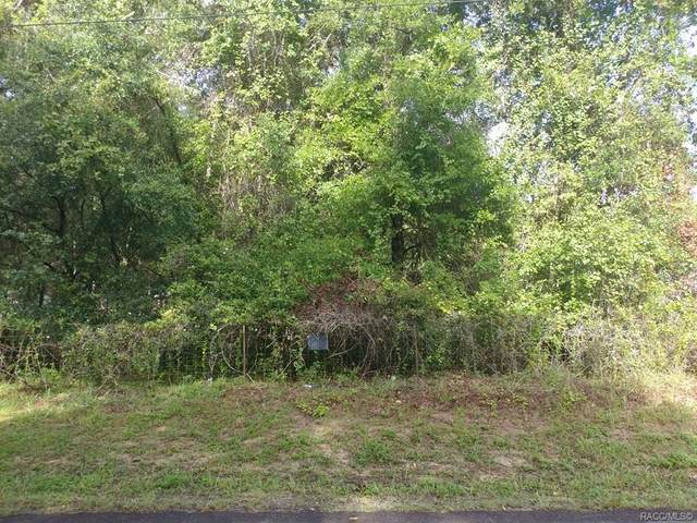 5104 N Tanglewood Avenue, Hernando, FL 34442 (MLS #794282) :: Plantation Realty Inc.