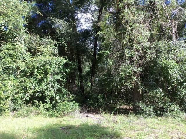 Lot 41 St. Benedict Drive, Dunnellon, FL 34432 (MLS #794469) :: Plantation Realty Inc.