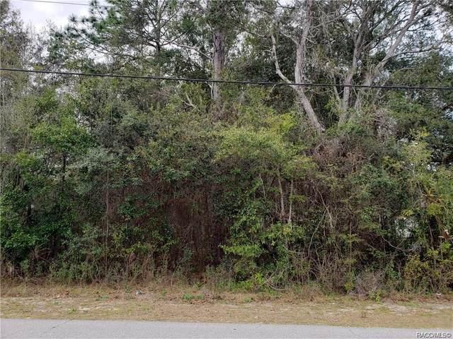 4536 S Leisure Drive, Lecanto, FL 34461 (MLS #794486) :: Plantation Realty Inc.