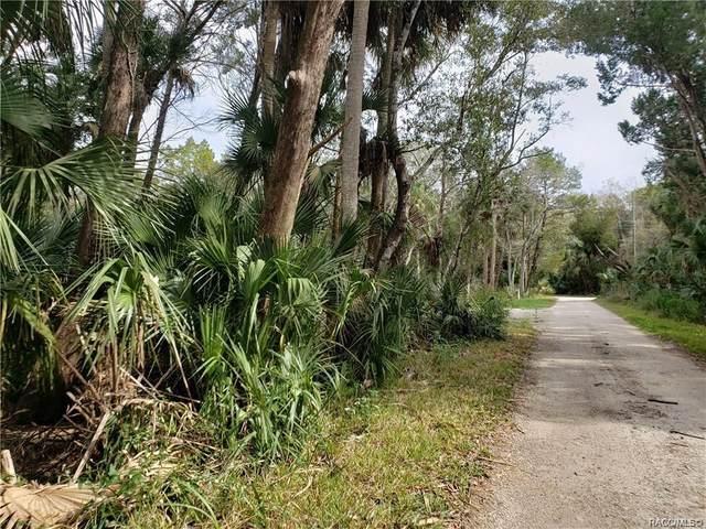 10535 W Fishbowl Drive, Homosassa, FL 34448 (MLS #794490) :: Plantation Realty Inc.