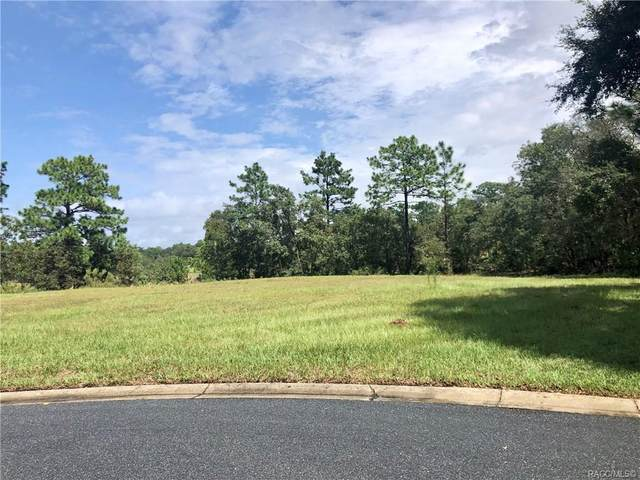 3581 N Spyglass Village Path, Lecanto, FL 34461 (MLS #794491) :: Plantation Realty Inc.