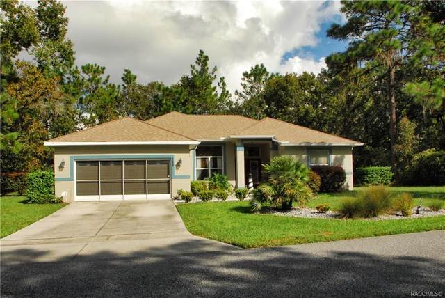133 Daisy Street, Homosassa, FL 34446 (MLS #794517) :: Plantation Realty Inc.