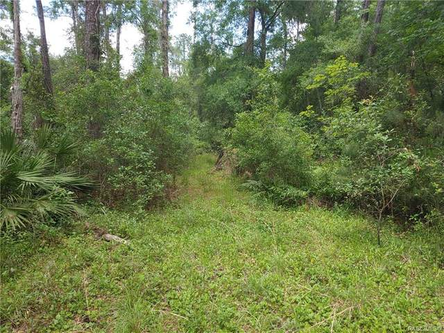 10349 N Big Bass Trail, Dunnellon, FL 34434 (MLS #794622) :: Plantation Realty Inc.