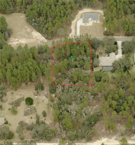 766 E Whitecloud Lane, Hernando, FL 34442 (MLS #794716) :: Plantation Realty Inc.