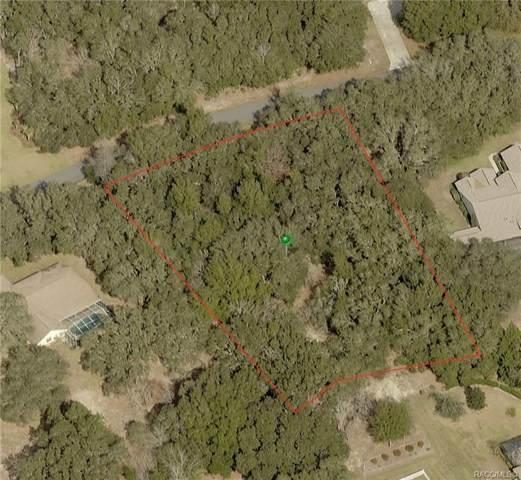 1466 E Wedgewood Lane, Hernando, FL 34442 (MLS #794719) :: Plantation Realty Inc.