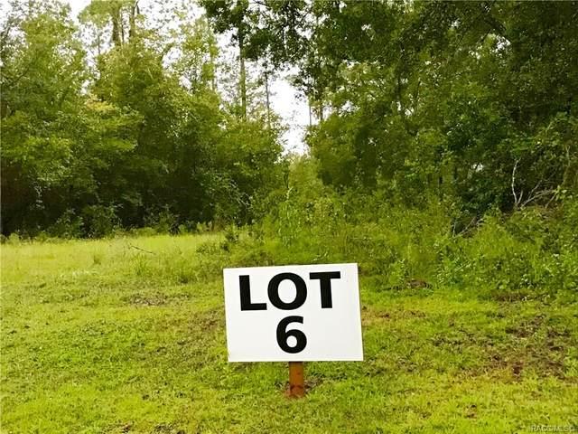 1900 W Oak Valley Court, Homosassa, FL 34446 (MLS #794753) :: Plantation Realty Inc.