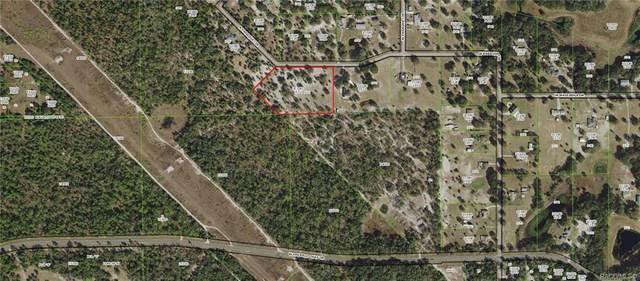6670 N Paraqua Circle, Crystal River, FL 34428 (MLS #794763) :: Plantation Realty Inc.