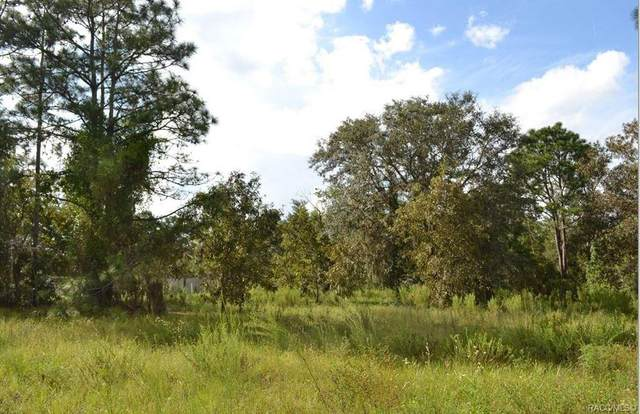 5565 W Dunnellon Road, Dunnellon, FL 34433 (MLS #794810) :: Plantation Realty Inc.