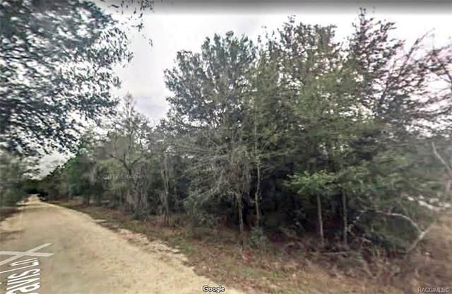 3251 E Davis Lane, Inverness, FL 34453 (MLS #794830) :: Plantation Realty Inc.