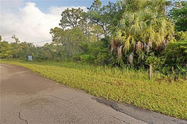 983 N Bobby Jones Point, Crystal River, FL 34429 (MLS #794840) :: Plantation Realty Inc.