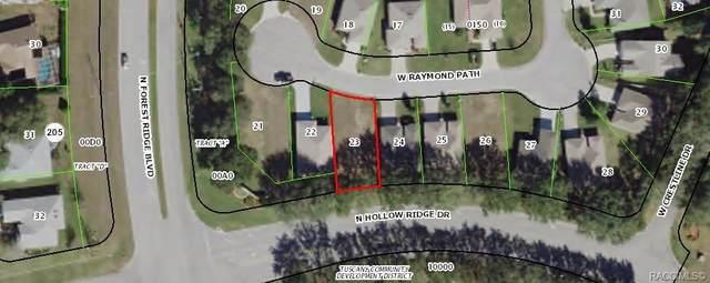 582 W Raymond Path, Beverly Hills, FL 34465 (MLS #794849) :: Plantation Realty Inc.