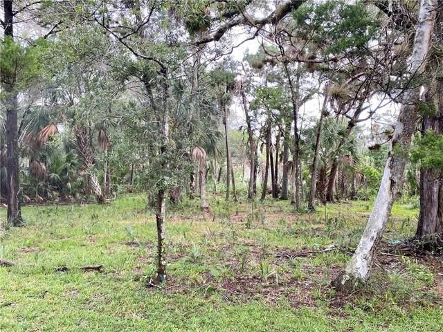 6950 S Hancock Road, Homosassa, FL 34448 (MLS #794868) :: Plantation Realty Inc.