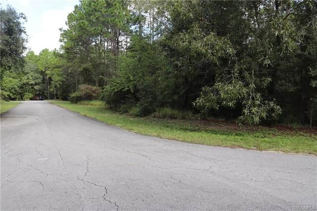 00 SW 211 Circle, Other, FL 34431 (MLS #794871) :: Plantation Realty Inc.