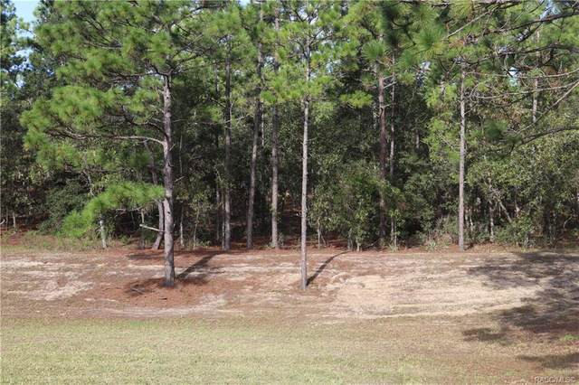 00 SW 125 CT Road, Dunnellon, FL 34432 (MLS #794879) :: Plantation Realty Inc.