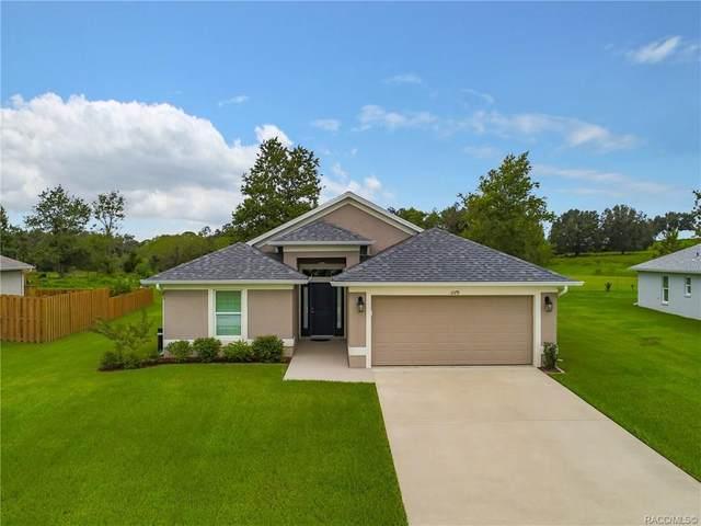 1179 S Glen Meadow Loop, Lecanto, FL 34461 (MLS #794900) :: Plantation Realty Inc.