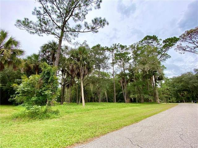 0 Riverside Drive, Yankeetown, FL 34498 (MLS #794971) :: Plantation Realty Inc.
