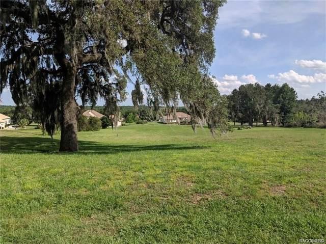 514 W Fenway Drive, Hernando, FL 34442 (MLS #795010) :: Plantation Realty Inc.