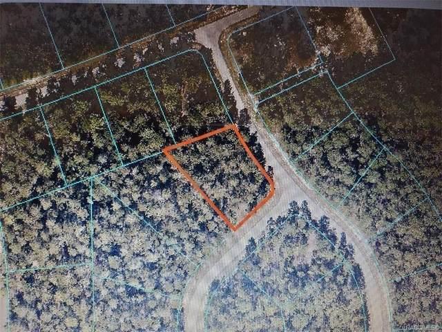 0 SW 39th Court, Ocala, FL 34473 (MLS #795013) :: Plantation Realty Inc.
