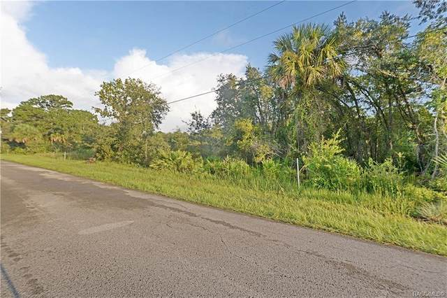 983 N Bobby Jones Point, Crystal River, FL 34429 (MLS #795019) :: Plantation Realty Inc.