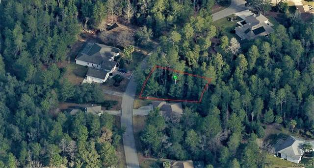 58 Bells Of Ireland Court, Homosassa, FL 34446 (MLS #795027) :: Plantation Realty Inc.