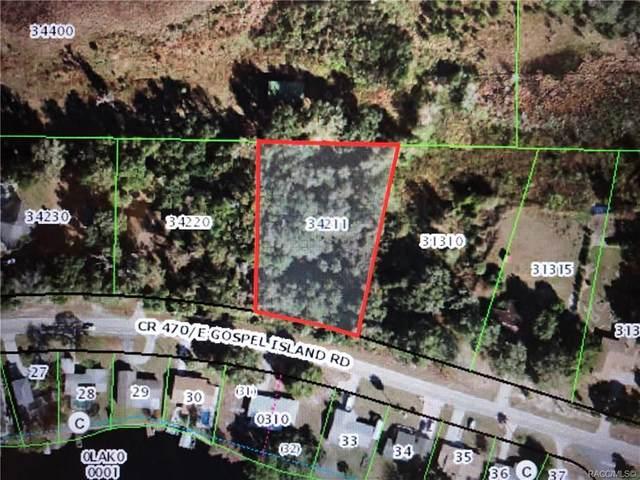 9041 E Gospel Island Road, Inverness, FL 34450 (MLS #795034) :: Plantation Realty Inc.