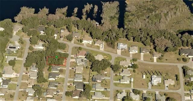 3062 S Franklin Terrace, Inverness, FL 34450 (MLS #795103) :: Plantation Realty Inc.