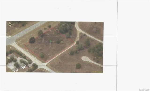 51 E Citrus Springs Boulevard, Citrus Springs, FL 34434 (MLS #795215) :: Plantation Realty Inc.