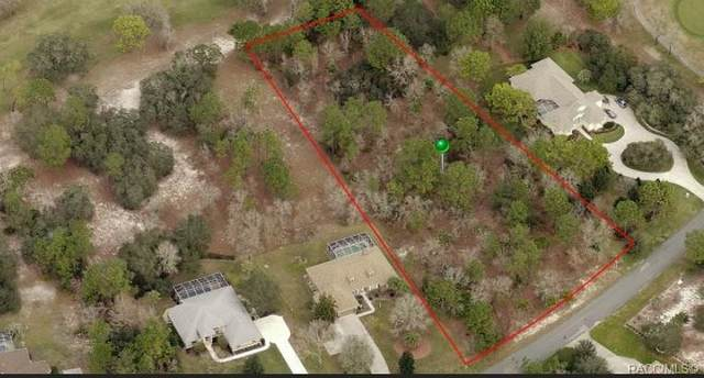 50 Beech Street, Homosassa, FL 34446 (MLS #795323) :: Plantation Realty Inc.