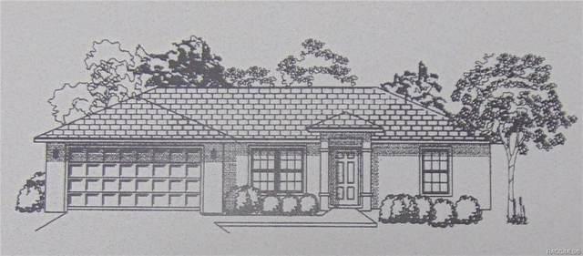 10557 N Haitian Drive, Citrus Springs, FL 34434 (MLS #795330) :: Plantation Realty Inc.