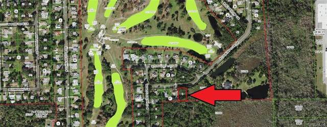 305 N Country Club Drive, Crystal River, FL 34429 (MLS #795340) :: Plantation Realty Inc.