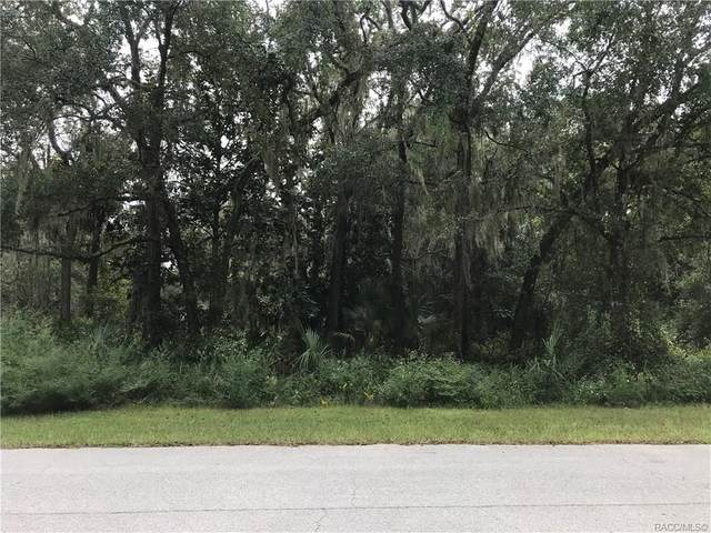 9402 W Red Valley Court, Crystal River, FL 34428 (MLS #795347) :: Plantation Realty Inc.