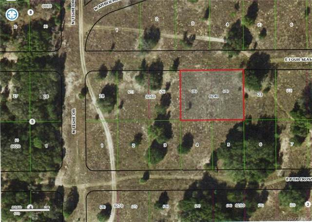 2250 E Four Seasons Lane, Inverness, FL 34453 (MLS #795366) :: Plantation Realty Inc.