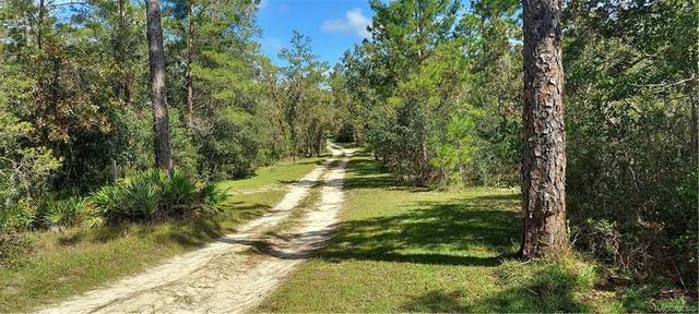 0 N Matsonford Avenue, Dunnellon, FL 34433 (MLS #795531) :: Plantation Realty Inc.