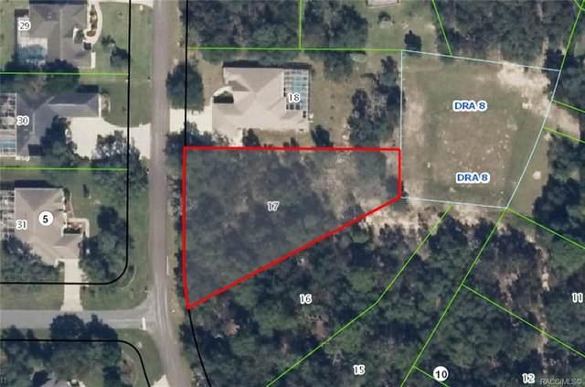 1527 E Monopoly Loop, Inverness, FL 34453 (MLS #795532) :: Plantation Realty Inc.