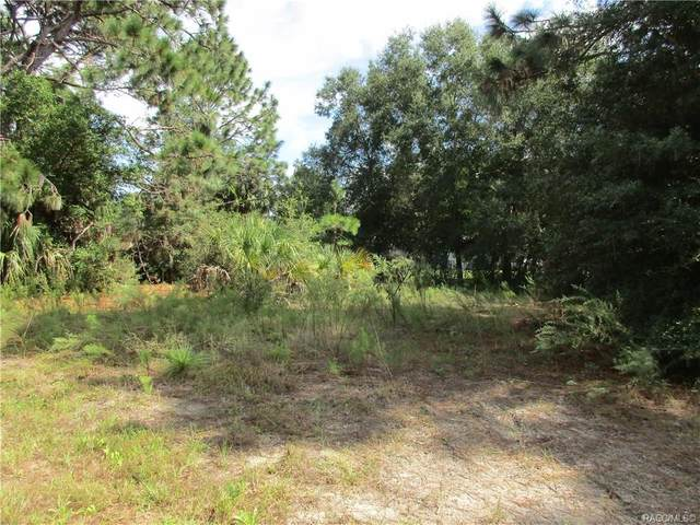 8633 N Sanfilippo Loop, Crystal River, FL 34428 (MLS #795558) :: Plantation Realty Inc.