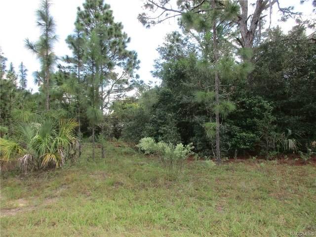 8653 N Sanfilippo Loop, Crystal River, FL 34428 (MLS #795652) :: Plantation Realty Inc.