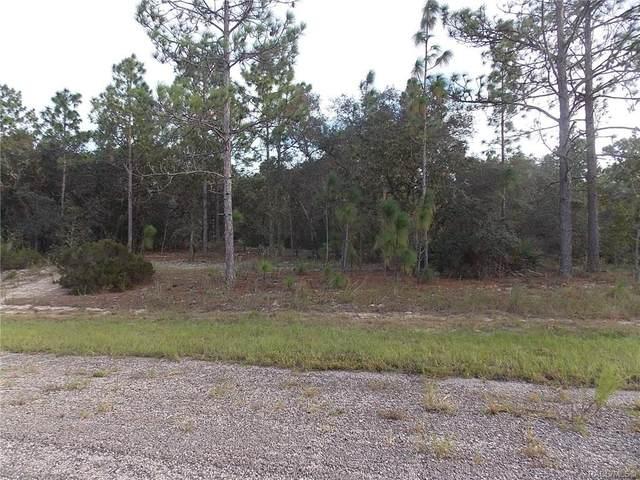 2864 W Huron Lane, Citrus Springs, FL 34433 (MLS #795699) :: Plantation Realty Inc.