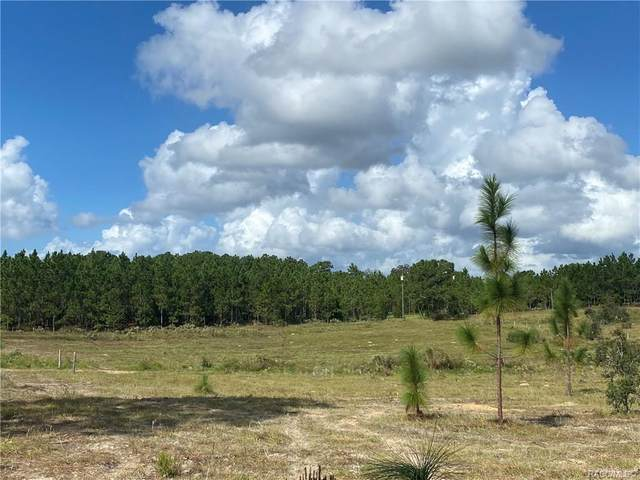 10568 N Statue Point, Dunnellon, FL 34433 (MLS #795727) :: Plantation Realty Inc.