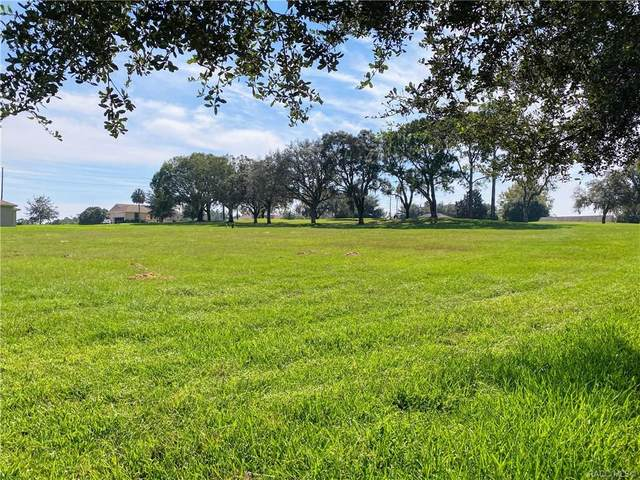 804 E Epsom Court, Hernando, FL 34442 (MLS #795729) :: Plantation Realty Inc.