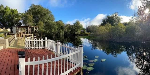 9201 E Beech Circle, Inverness, FL 34450 (MLS #795741) :: Plantation Realty Inc.