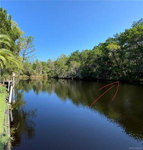 4380 & 4392 S Cox Point, Homosassa, FL 34448 (MLS #795760) :: Plantation Realty Inc.