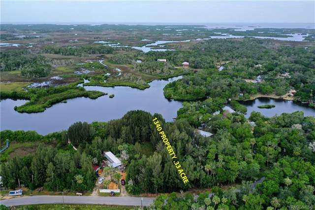 1340 S Estuary Drive, Crystal River, FL 34429 (MLS #795764) :: Plantation Realty Inc.