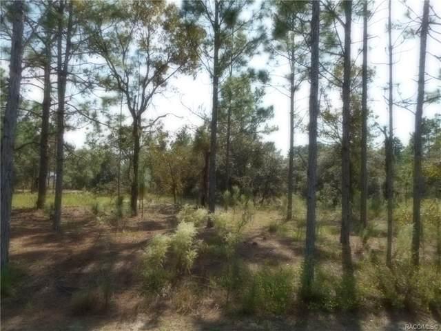 Lot 12 SW Surf Boulevard, Dunnellon, FL 34431 (MLS #795789) :: Plantation Realty Inc.