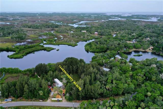 1344 S Estuary Drive, Crystal River, FL 34429 (MLS #795805) :: Plantation Realty Inc.