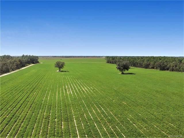 TBD NE 127TH Court, Williston, FL 32696 (MLS #795833) :: Plantation Realty Inc.
