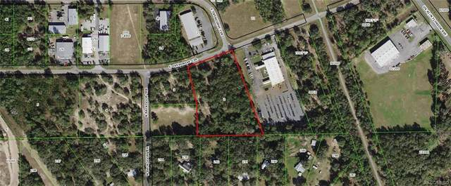 1234 E Overdrive Circle, Hernando, FL 34442 (MLS #795835) :: Plantation Realty Inc.
